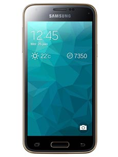 Samsung Galaxy S5 Mini Or