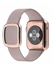 Apple Watch Edition Or Rose 38mm Bracelet Boucle Moderne Gris Rose