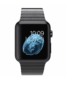 Apple Watch Acier 42mm Bracelet à Maillons Noir