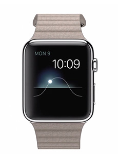 Apple Watch Acier 42mm Bracelet en Cuir Gris