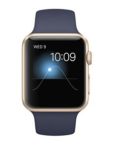 Apple Watch Sport Aluminium Or 42mm Bleu Nuit