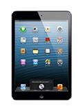 Apple iPad mini 32Go Noir Occasion