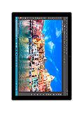 Microsoft Surface Pro 4 i7 256Go 16Go RAM Argent