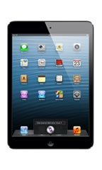 Apple iPad mini Noir Occasion