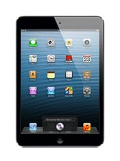 Apple iPad mini Noir
