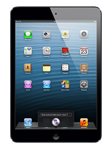 Apple iPad mini 32Go Noir Occasion